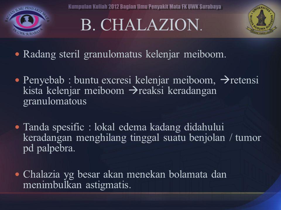 B. CHALAZION. Radang steril granulomatus kelenjar meiboom.
