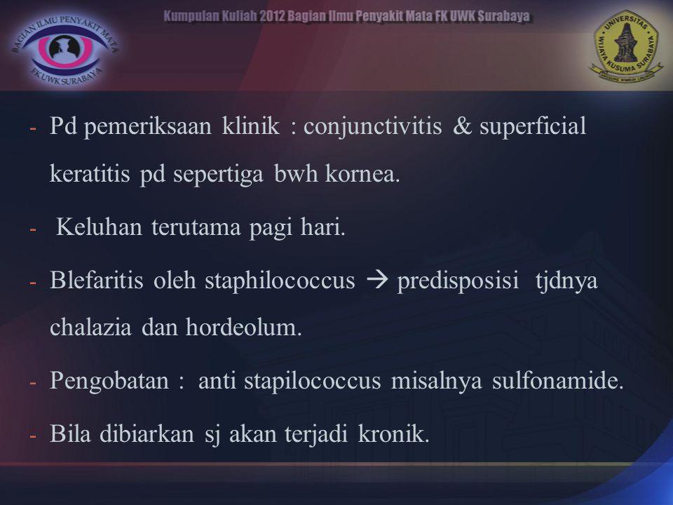 Pd pemeriksaan klinik : conjunctivitis & superficial keratitis pd sepertiga bwh kornea.