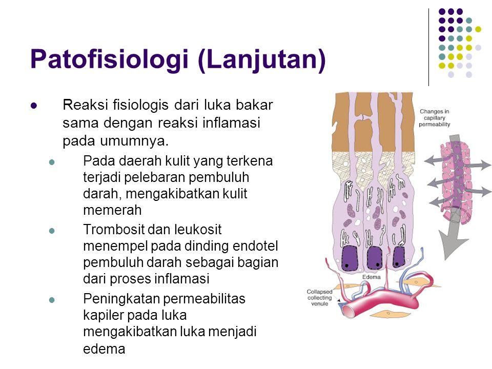 Patofisiologi (Lanjutan)