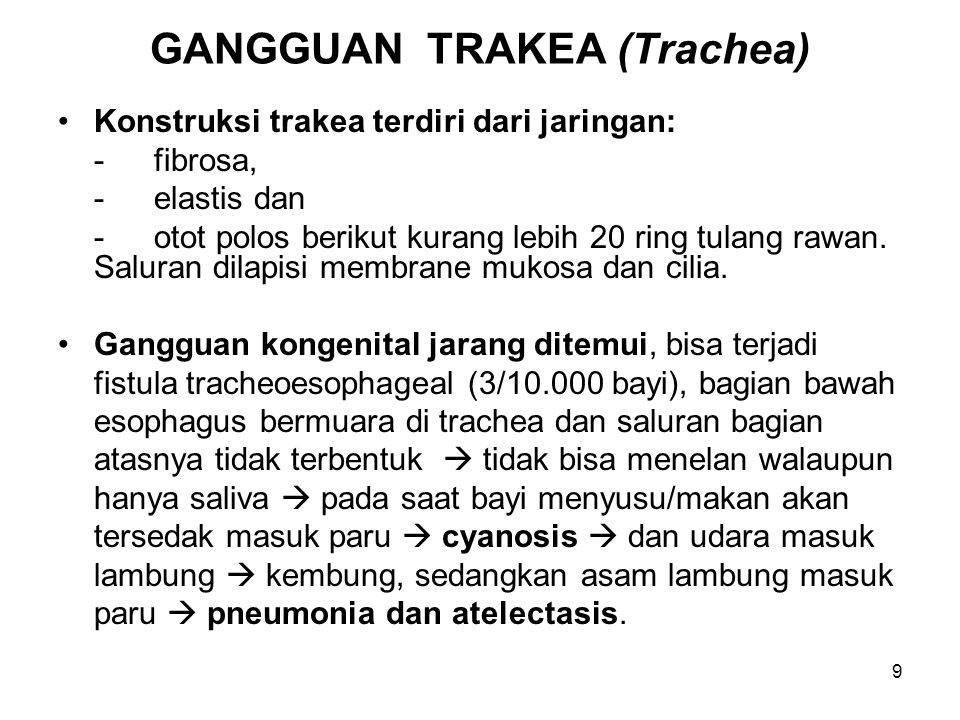 GANGGUAN TRAKEA (Trachea)