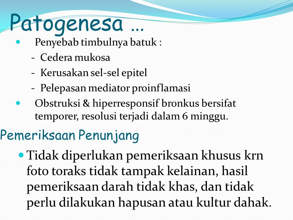 Patogenesa … Pemeriksaan Penunjang