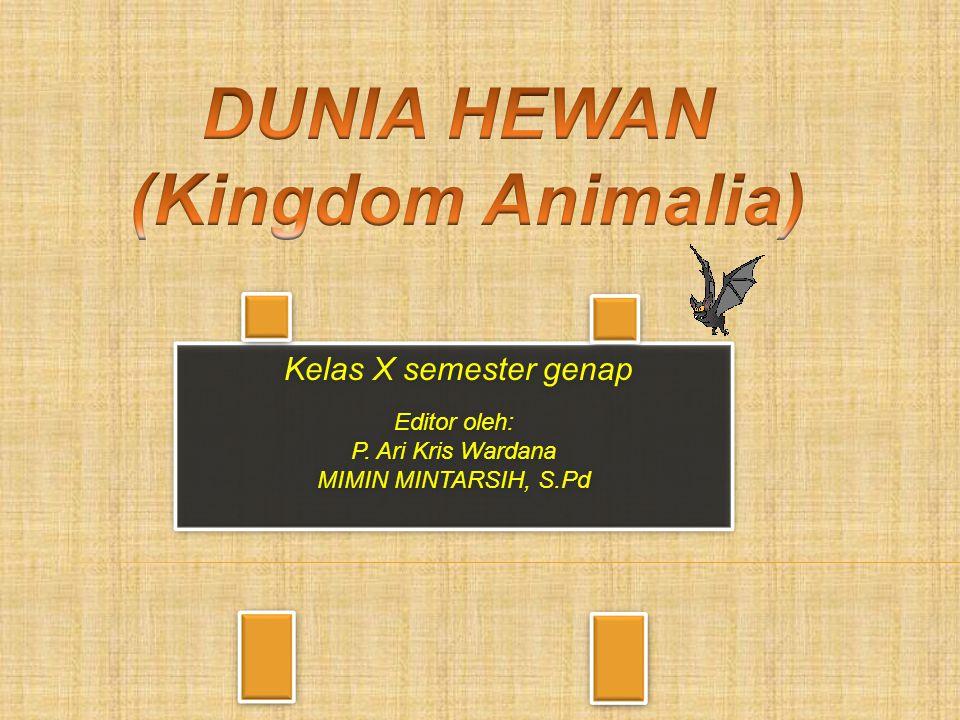 DUNIA HEWAN (Kingdom Animalia)