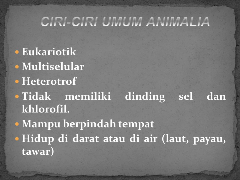 CIRI-CIRI UMUM ANIMALIA