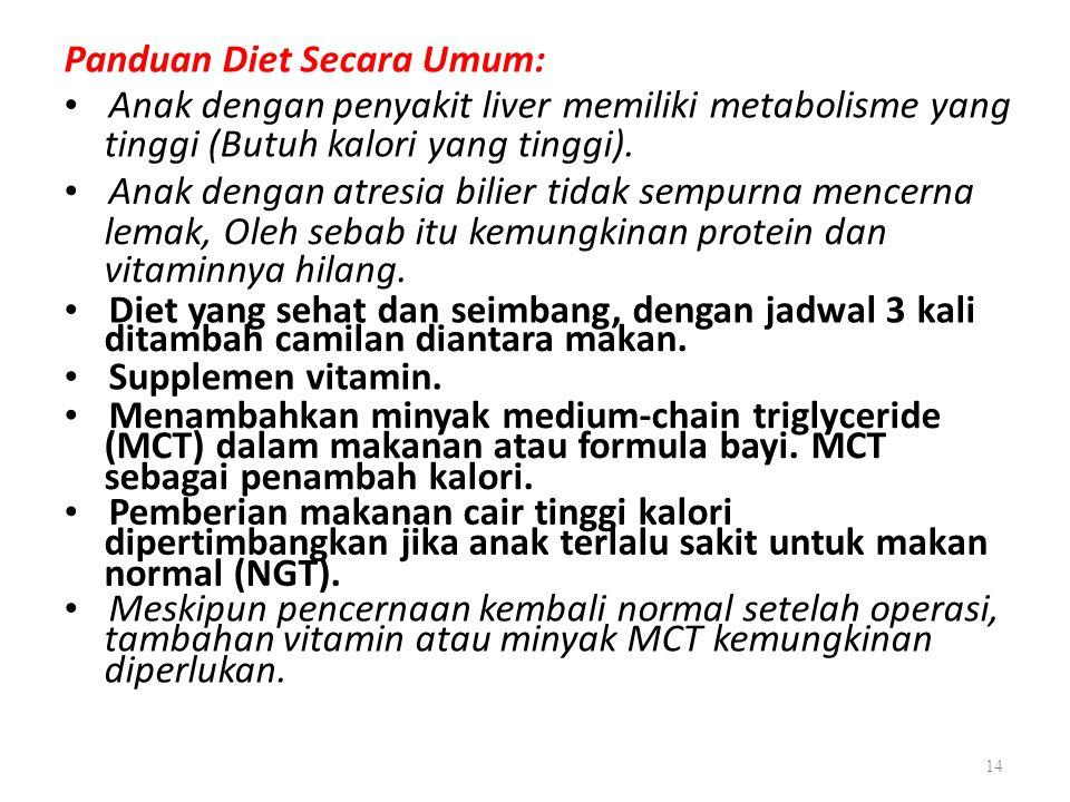 Panduan Diet Secara Umum: