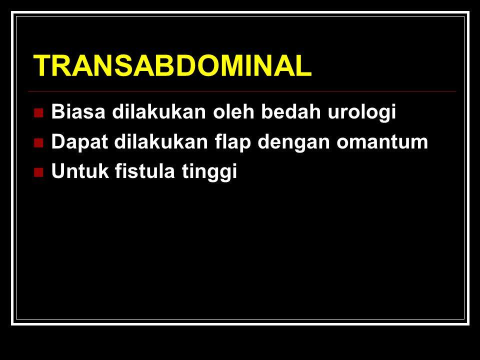 TRANSABDOMINAL Biasa dilakukan oleh bedah urologi