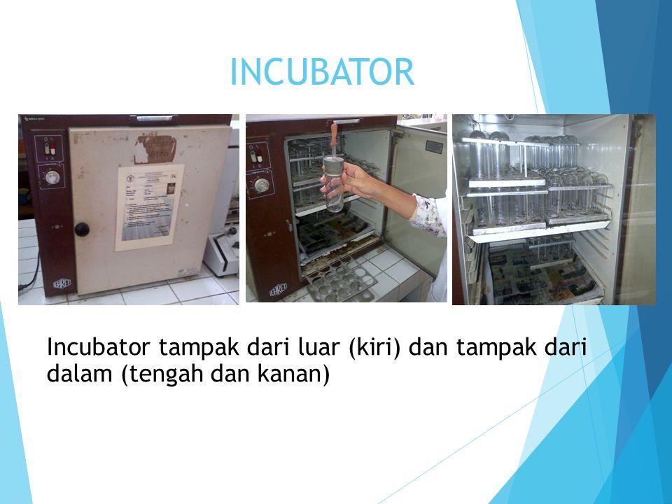 INCUBATOR Incubator tampak dari luar (kiri) dan tampak dari dalam (tengah dan kanan)