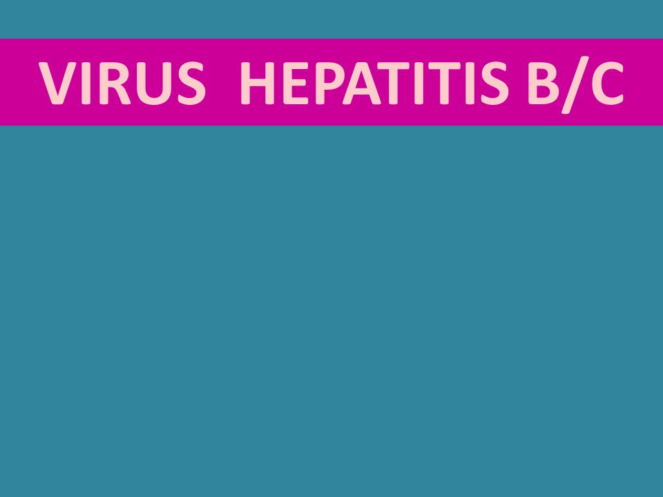 VIRUS HEPATITIS B/C