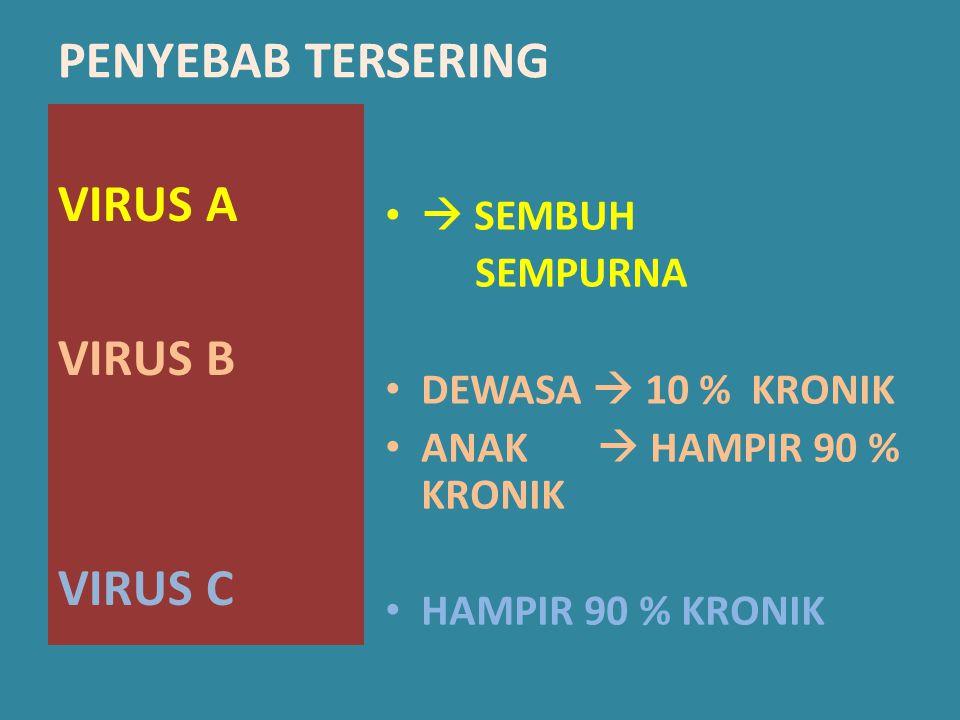 PENYEBAB TERSERING VIRUS A VIRUS B VIRUS C  SEMBUH SEMPURNA