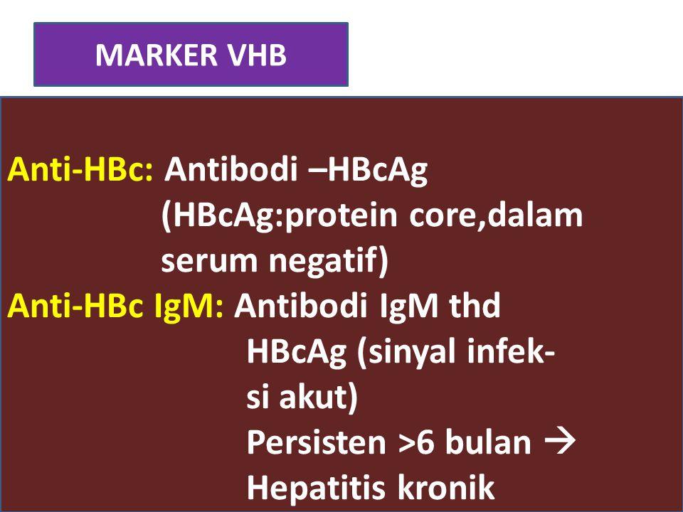 Anti-HBc: Antibodi –HBcAg (HBcAg:protein core,dalam serum negatif)