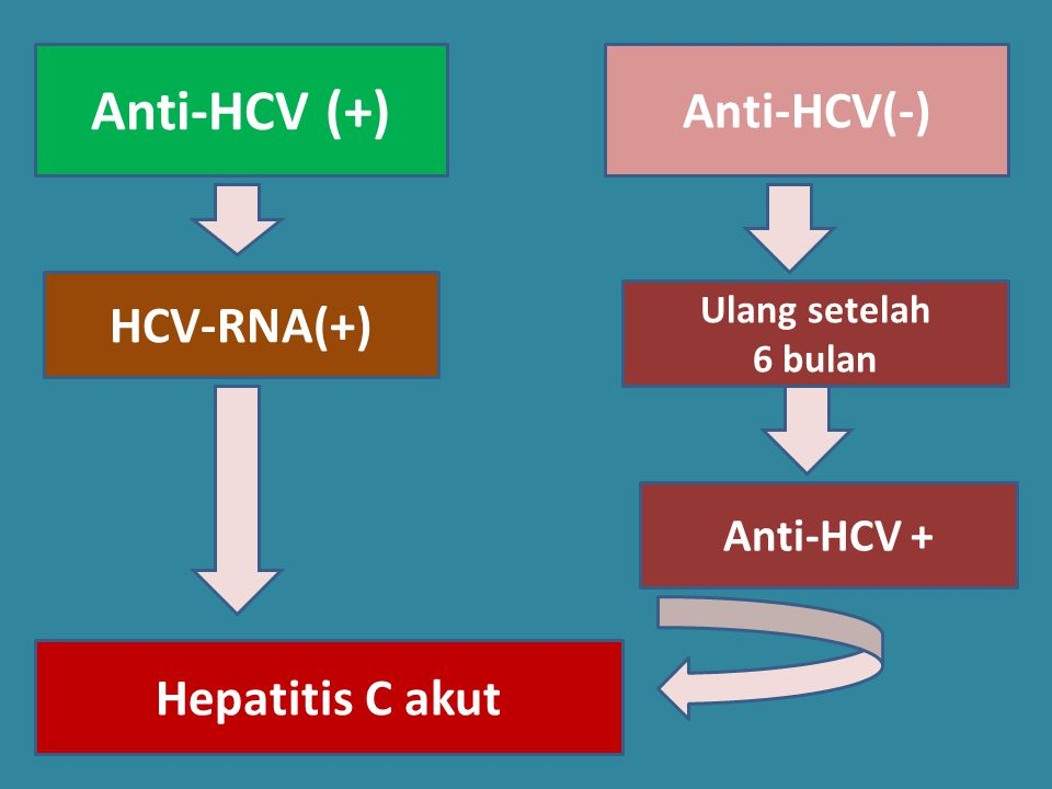 Anti-HCV (+) Anti-HCV(-) HCV-RNA(+) Hepatitis C akut Anti-HCV +
