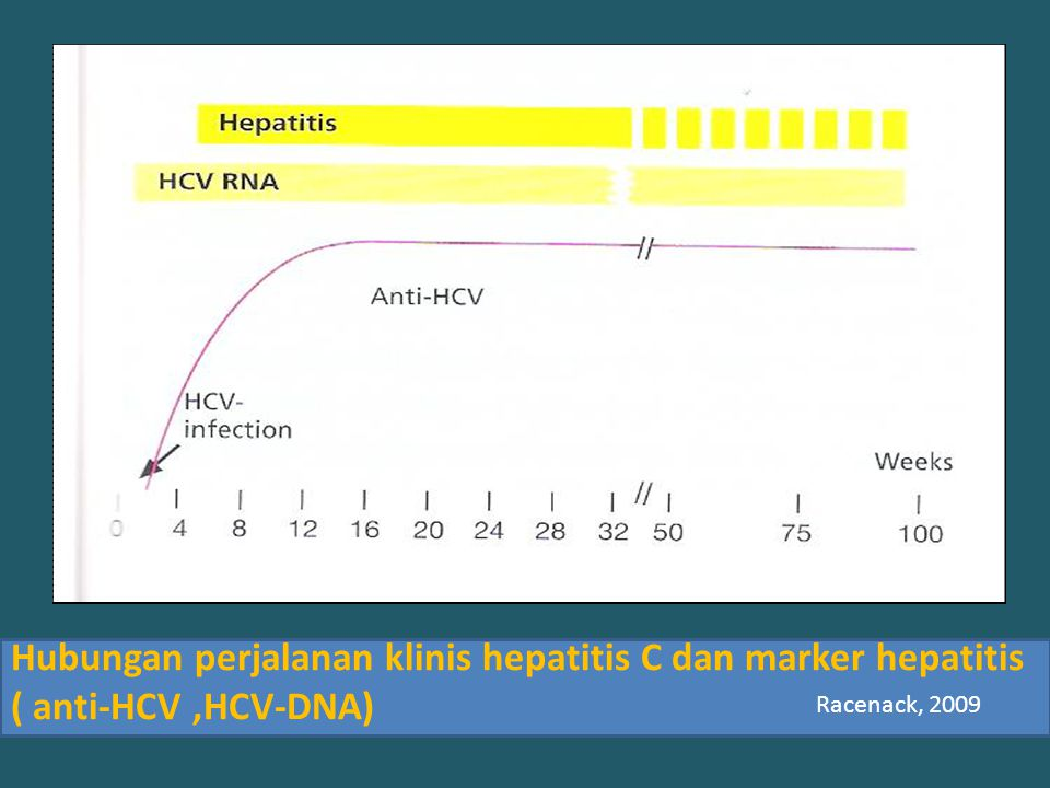 Hubungan perjalanan klinis hepatitis C dan marker hepatitis ( anti-HCV ,HCV-DNA)