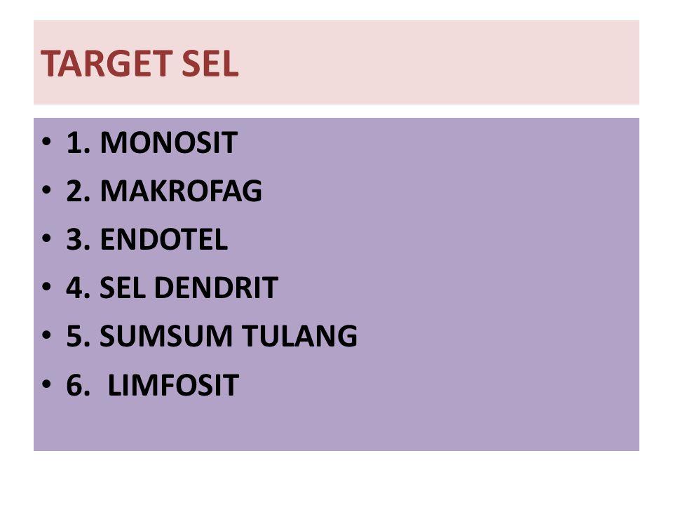 TARGET SEL 1. MONOSIT 2. MAKROFAG 3. ENDOTEL 4. SEL DENDRIT