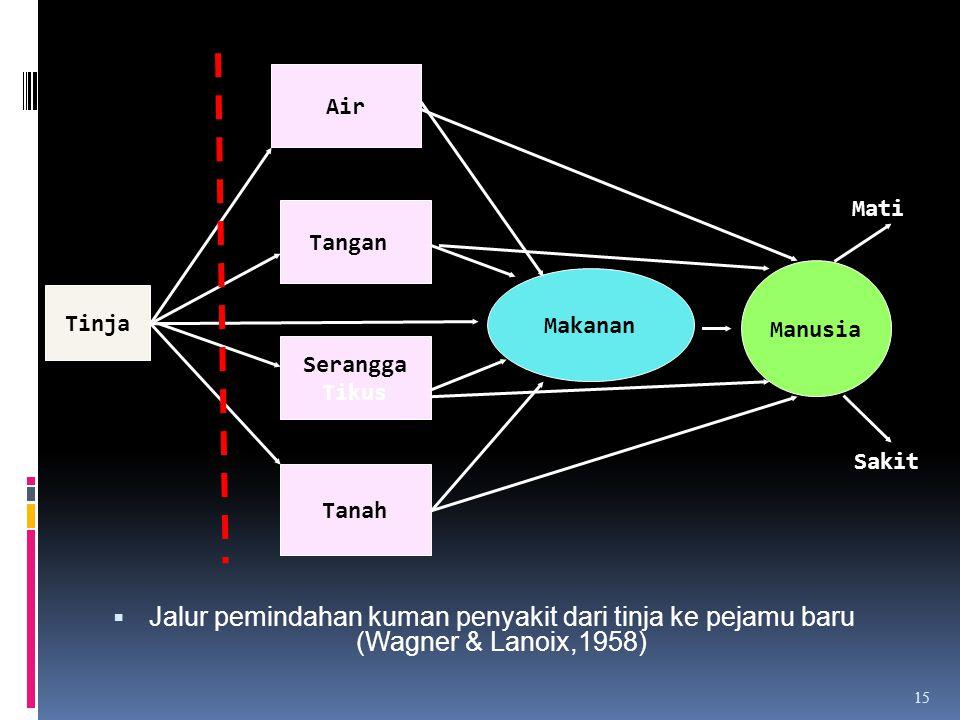 Air Mati. Jalur pemindahan kuman penyakit dari tinja ke pejamu baru (Wagner & Lanoix,1958) Tangan.