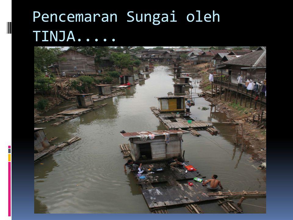 Pencemaran Sungai oleh TINJA.....