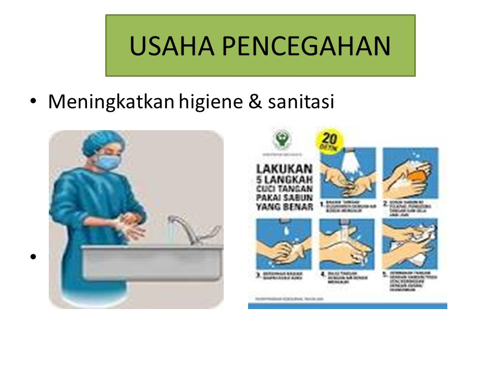 USAHA PENCEGAHAN Meningkatkan higiene & sanitasi