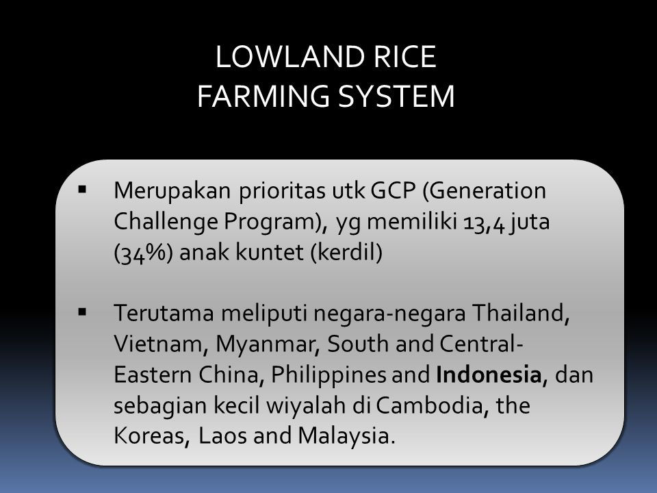 LOWLAND RICE FARMING SYSTEM