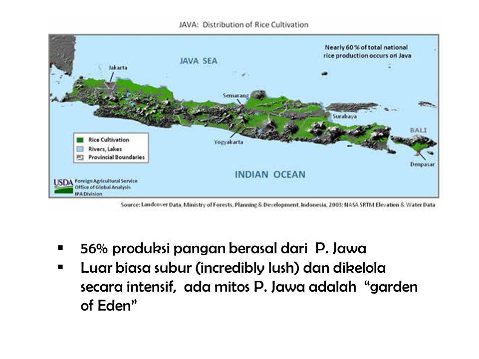 56% produksi pangan berasal dari P. Jawa