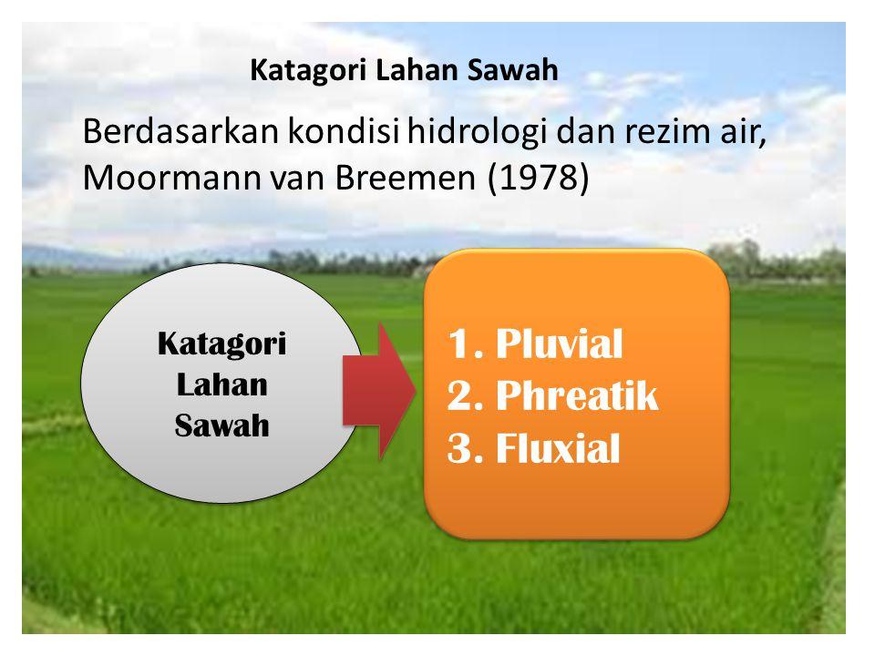 Pluvial Phreatik Fluxial