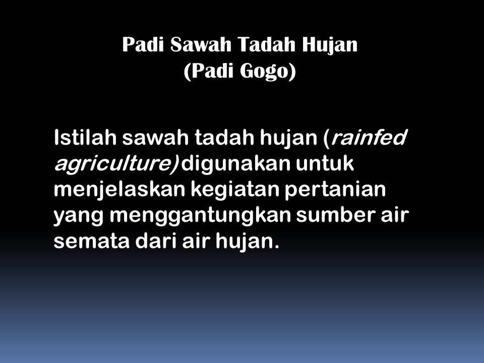 Padi Sawah Tadah Hujan (Padi Gogo)