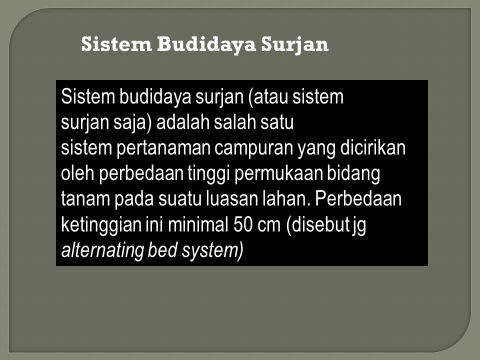 Sistem Budidaya Surjan