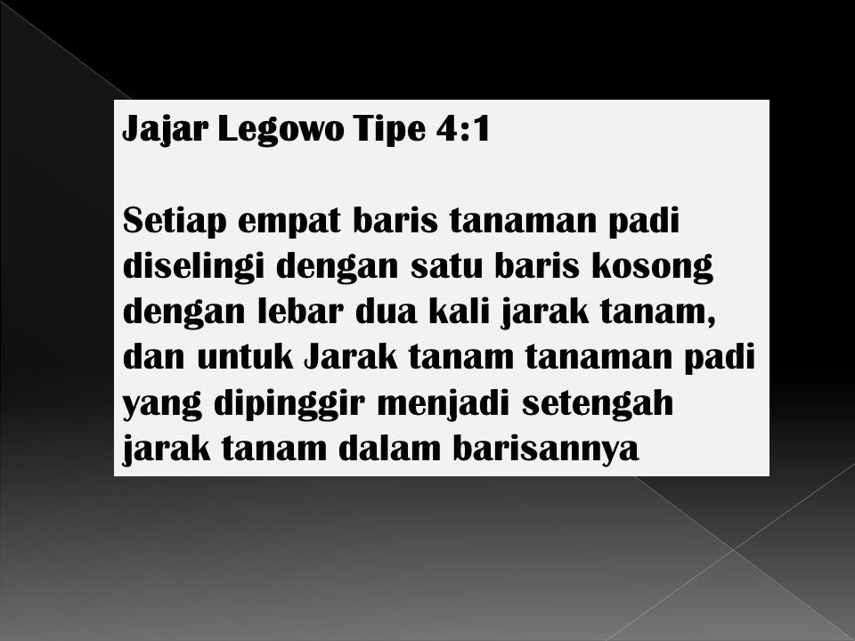 Jajar Legowo Tipe 4:1