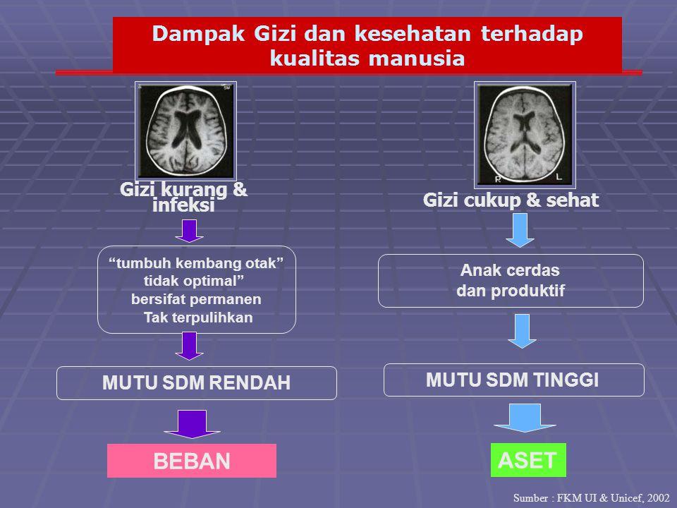 BEBAN ASET Dampak Gizi dan kesehatan terhadap kualitas manusia