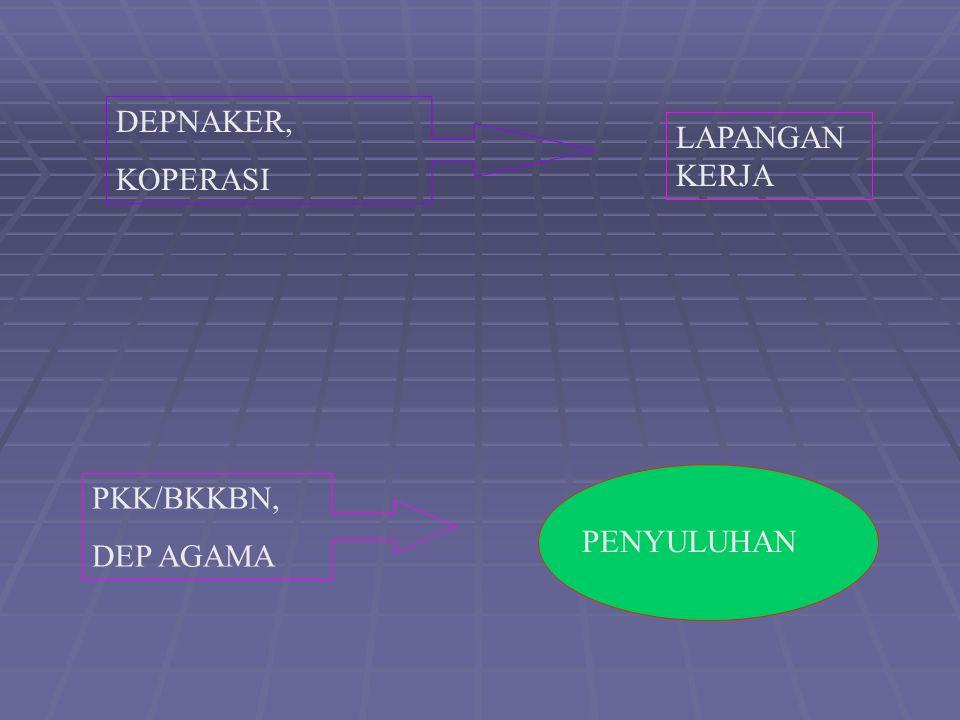 DEPNAKER DEPNAKER, KOPERASI LAPANGAN KERJA PKK/BKKBN, DEP AGAMA PENYULUHAN