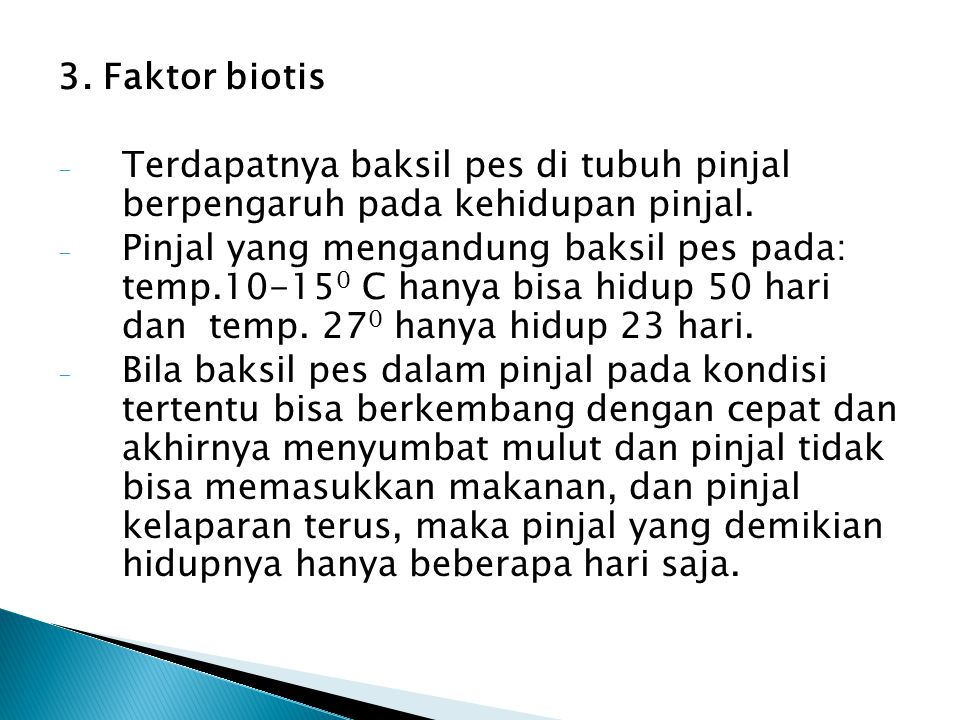 3. Faktor biotis Terdapatnya baksil pes di tubuh pinjal berpengaruh pada kehidupan pinjal.
