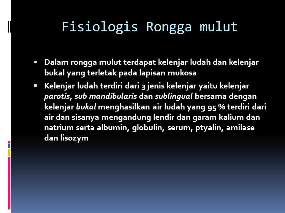 Fisiologis Rongga mulut