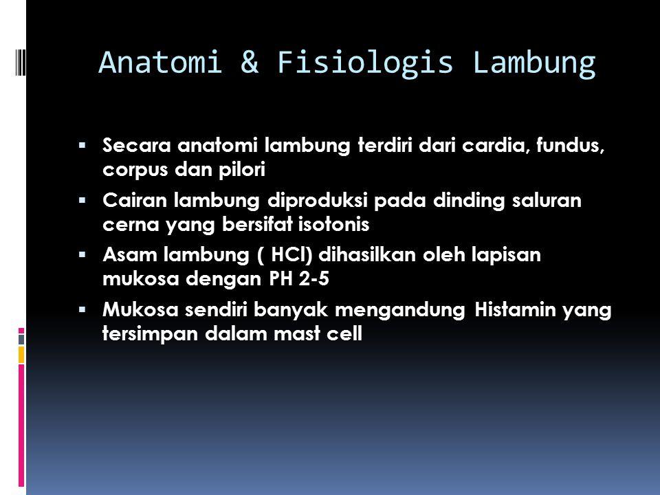 Anatomi & Fisiologis Lambung