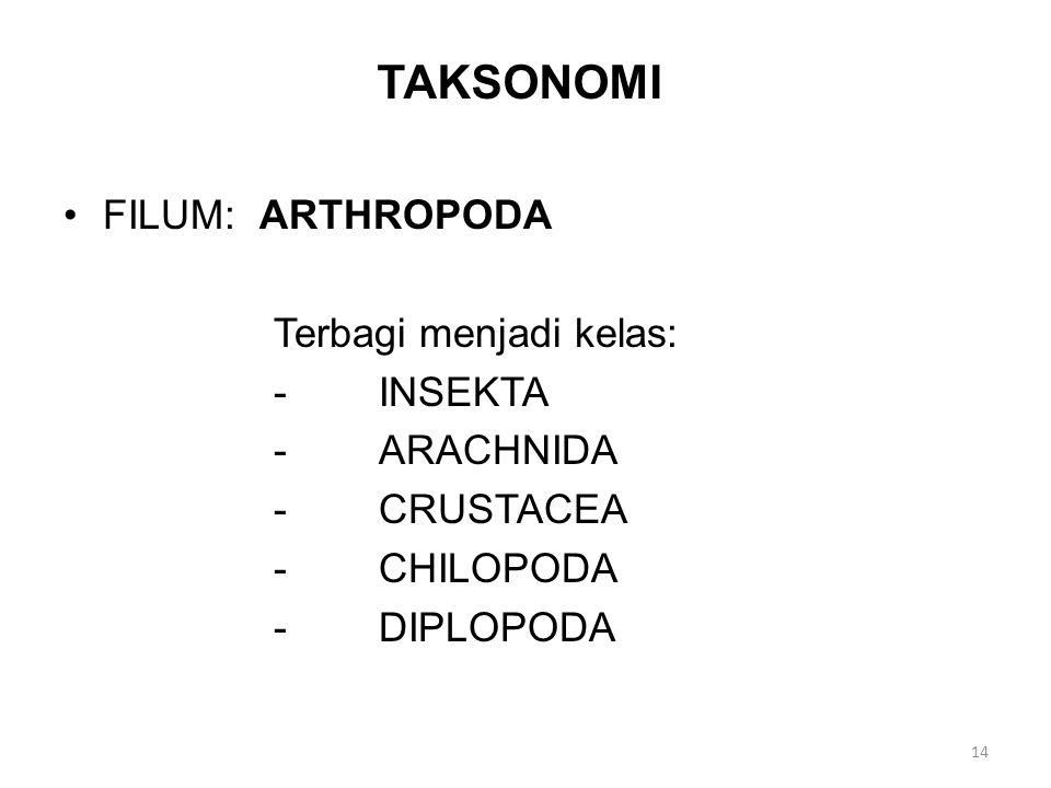 TAKSONOMI FILUM: ARTHROPODA Terbagi menjadi kelas: - INSEKTA