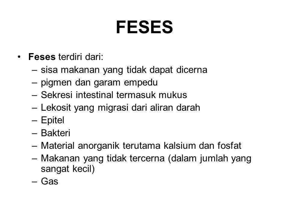 FESES Feses terdiri dari: sisa makanan yang tidak dapat dicerna
