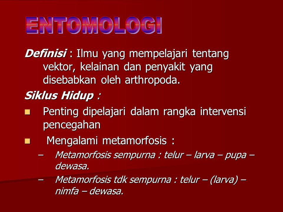 ENTOMOLOGI Definisi : Ilmu yang mempelajari tentang vektor, kelainan dan penyakit yang disebabkan oleh arthropoda.