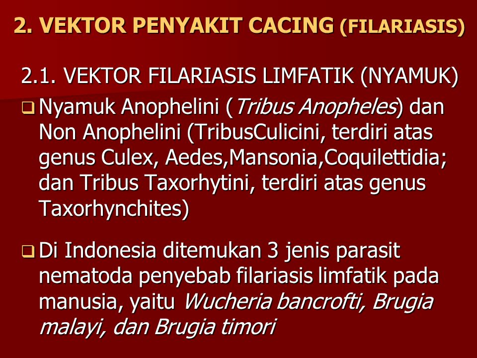2. VEKTOR PENYAKIT CACING (FILARIASIS)