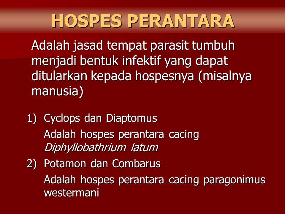 HOSPES PERANTARA Adalah jasad tempat parasit tumbuh menjadi bentuk infektif yang dapat ditularkan kepada hospesnya (misalnya manusia)