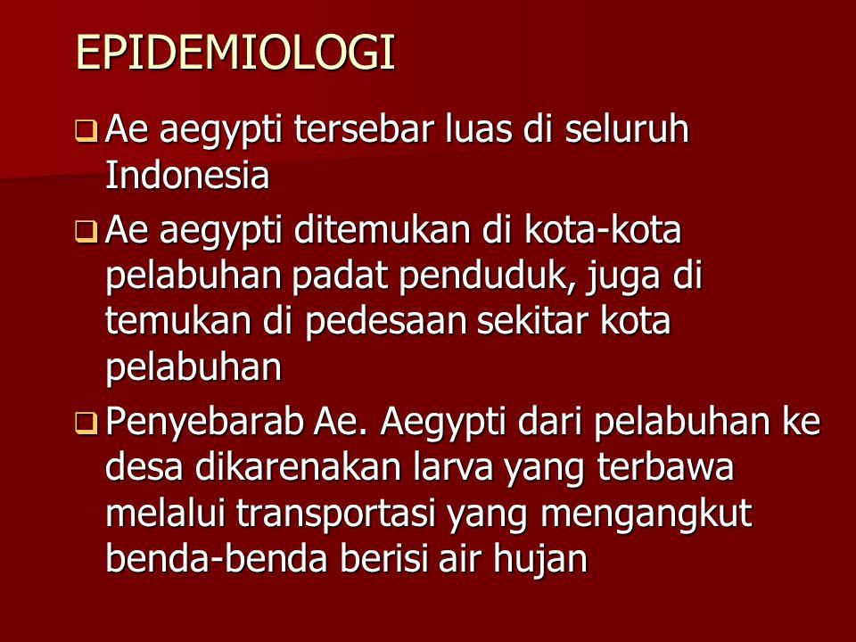 EPIDEMIOLOGI Ae aegypti tersebar luas di seluruh Indonesia