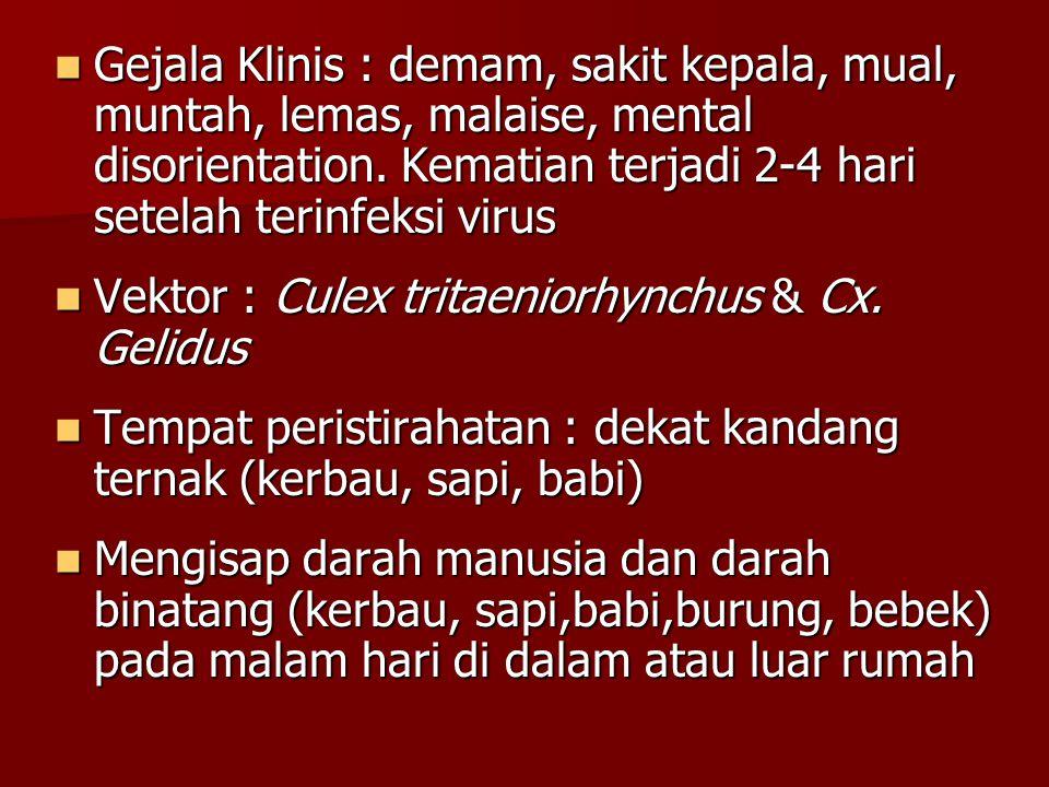 Gejala Klinis : demam, sakit kepala, mual, muntah, lemas, malaise, mental disorientation. Kematian terjadi 2-4 hari setelah terinfeksi virus
