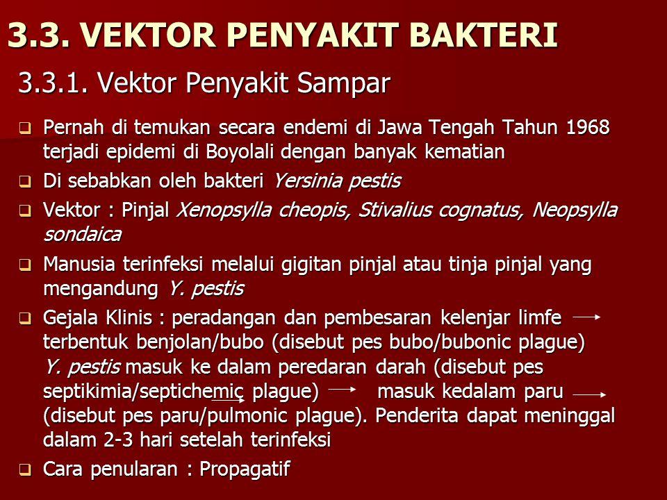 3.3. VEKTOR PENYAKIT BAKTERI
