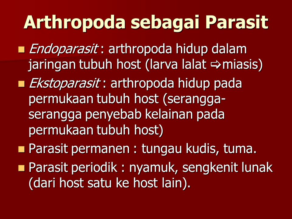 Arthropoda sebagai Parasit