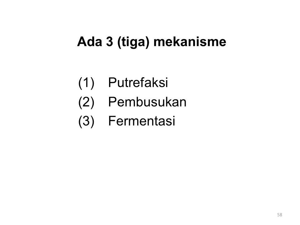 Ada 3 (tiga) mekanisme (1) Putrefaksi (2) Pembusukan (3) Fermentasi