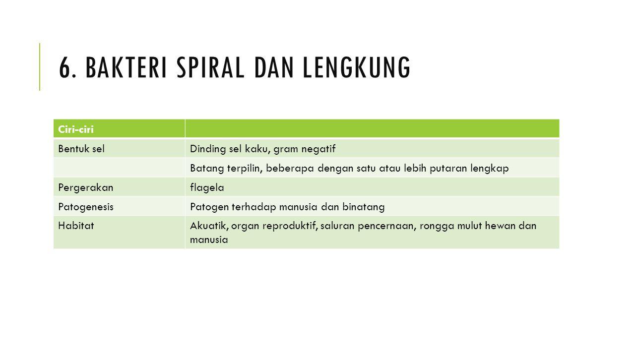 6. Bakteri spiral dan lengkung