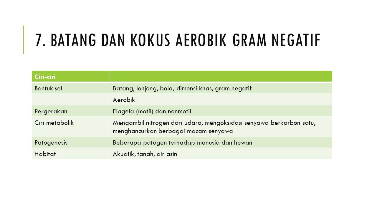 7. Batang dan kokus aerobik gram negatif