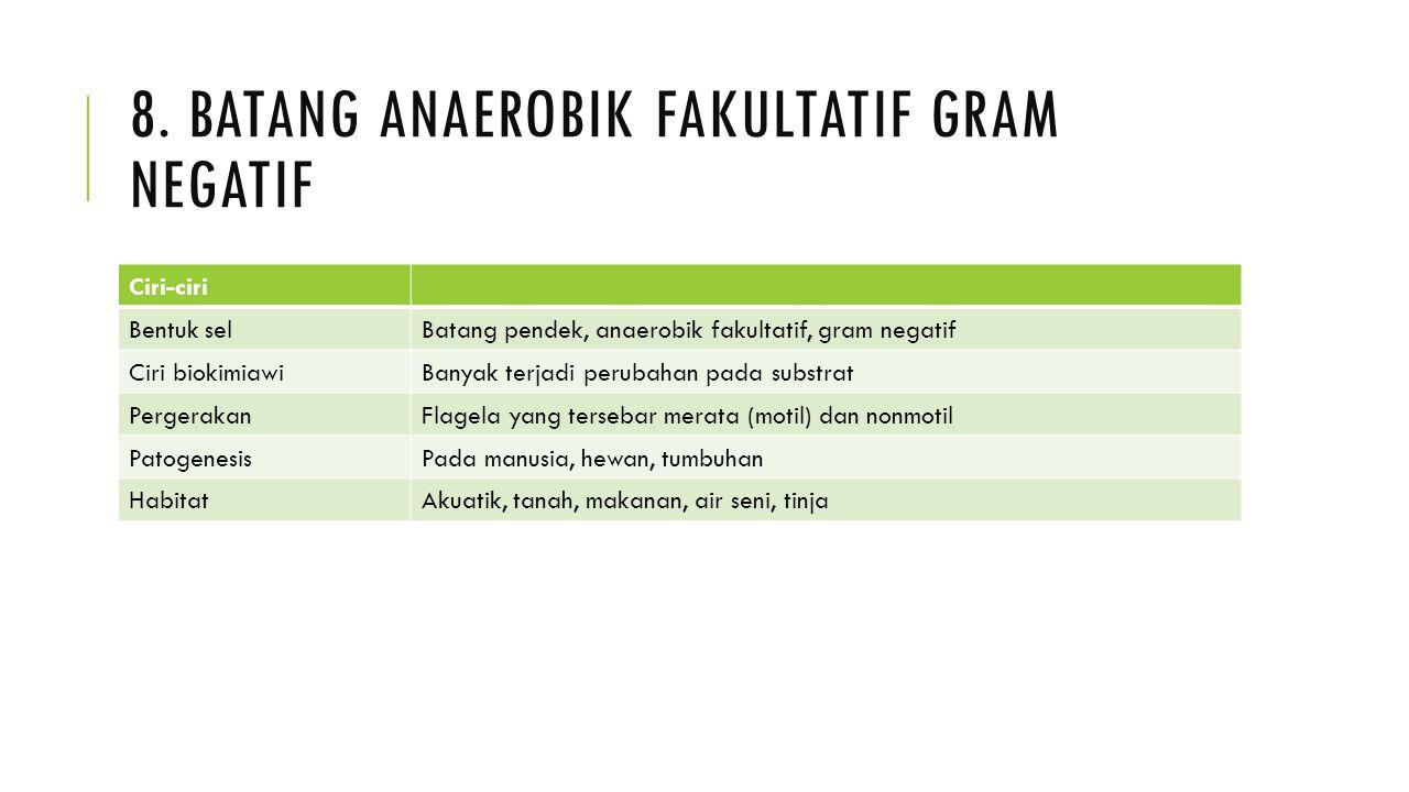 8. Batang anaerobik fakultatif gram negatif