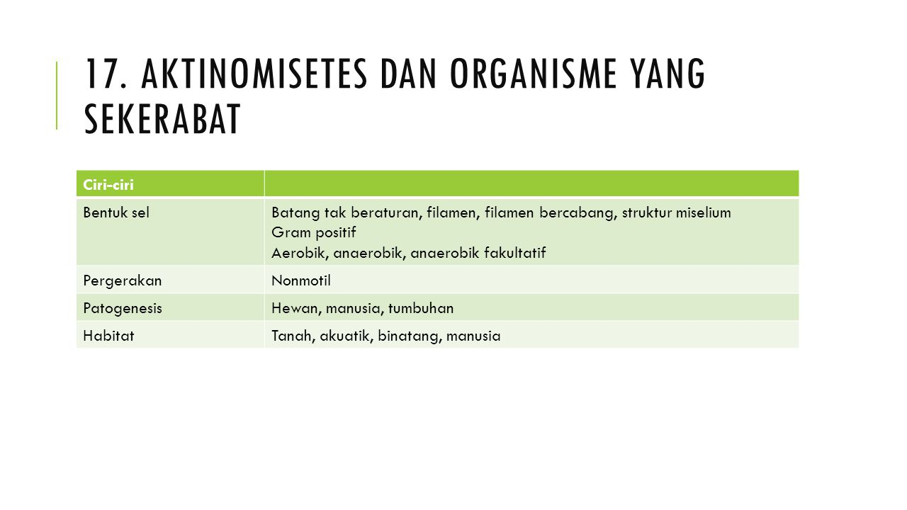 17. Aktinomisetes dan organisme yang sekerabat