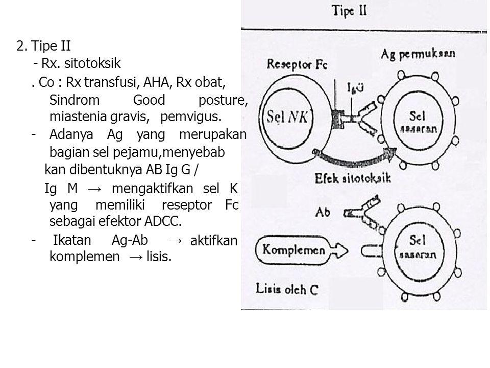 yang memiliki reseptor sebagai efektor ADCC. Fc