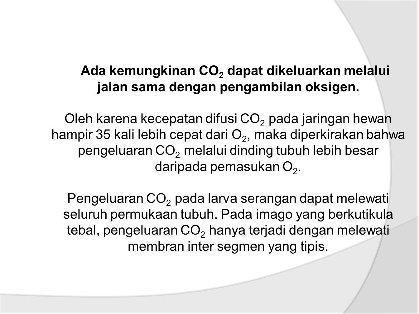 Ada kemungkinan CO2 dapat dikeluarkan melalui jalan sama dengan pengambilan oksigen.