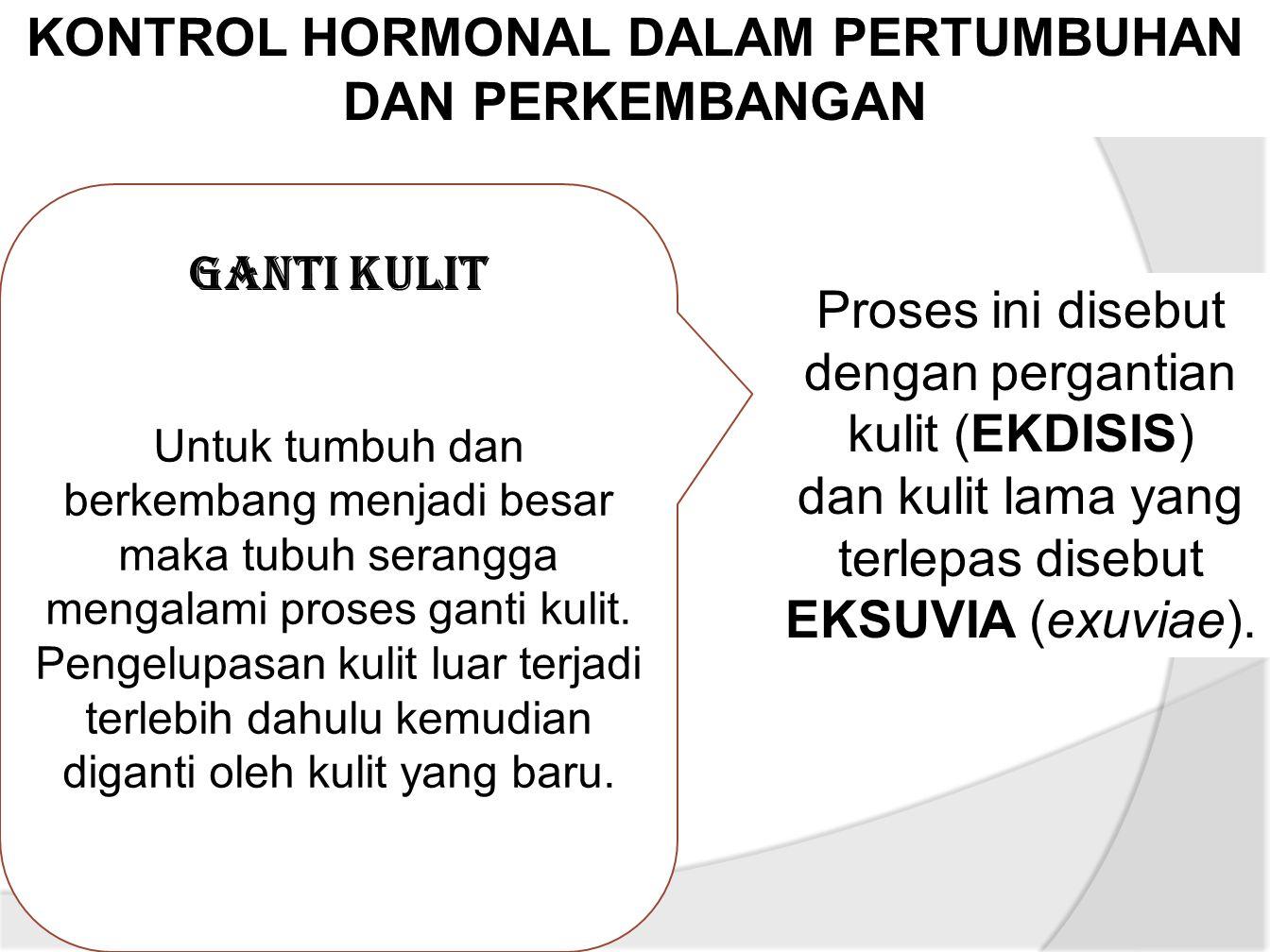KONTROL HORMONAL DALAM PERTUMBUHAN DAN PERKEMBANGAN