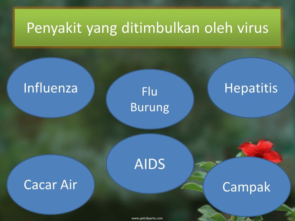 Penyakit yang ditimbulkan oleh virus