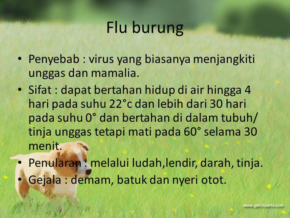 Flu burung Penyebab : virus yang biasanya menjangkiti unggas dan mamalia.