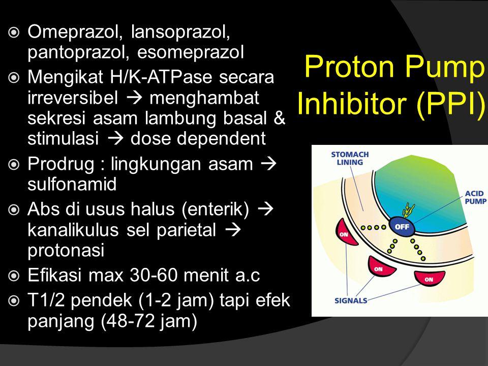 Proton Pump Inhibitor (PPI)